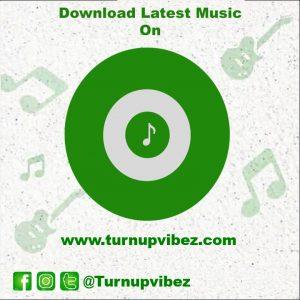 Turnupvibez - Music and Entertainment website