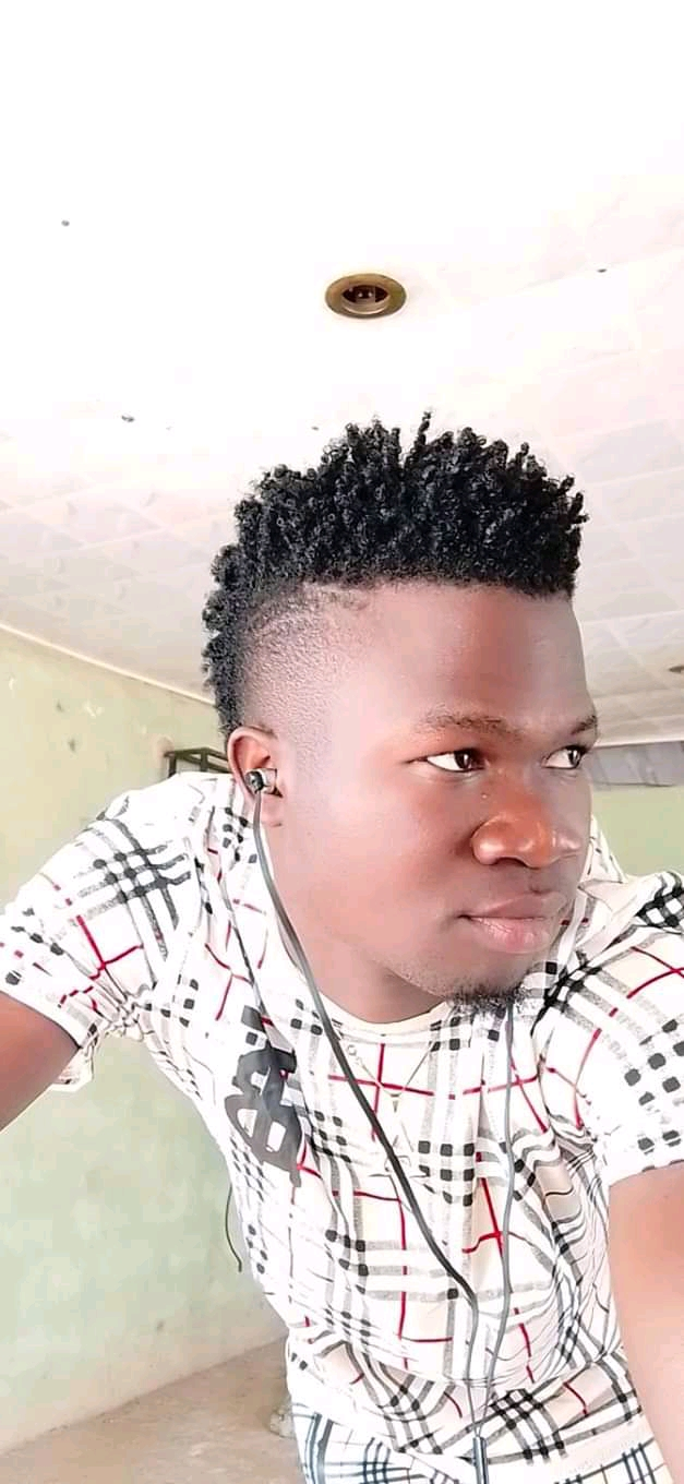 Benue state would have gone far if everyone was not an artist - Anande Alfred