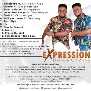 Dynamic Twins - Expression